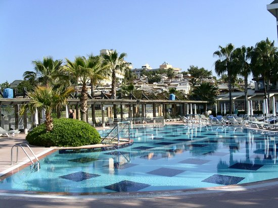 Trendy Palm Beach: Pool area