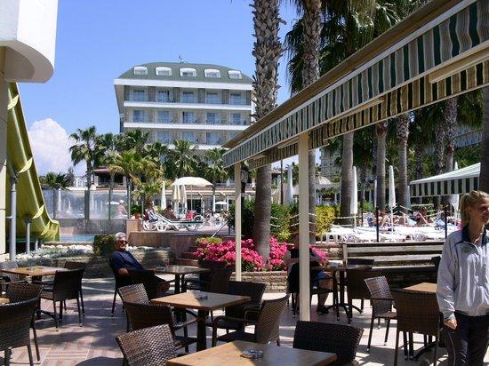 Trendy Palm Beach: Pool bar