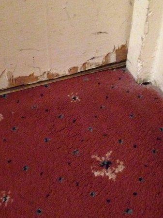 Adelphi Hotel & Spa: Room 259 carpet  - worn - and the door ! Shabby !