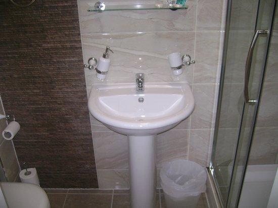 Sapphire Hotel London: lavabo