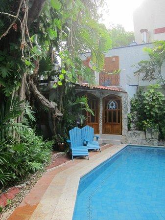 Eco-Hotel El Rey Del Caribe: Pool Area