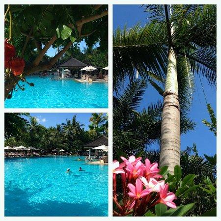 Padma Resort Legian: by the pool