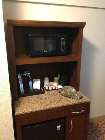 Hilton Garden Inn Pikeville: Microwave and fridge