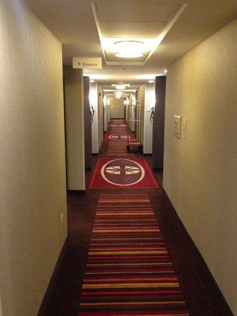 Hilton Garden Inn Pikeville: Hallway.
