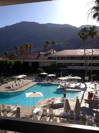 Hilton Palm Springs: Room View