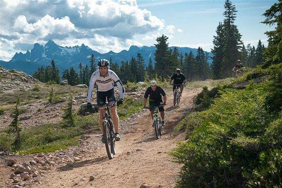 Sea to Sky Adventure Company: Mountain Biking Squamish