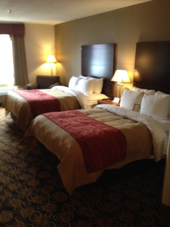 Comfort Inn: Two double bed room