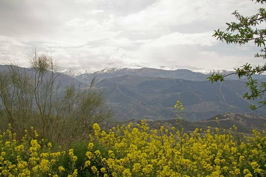 Solar Montes Claros: Stunning views over the Sierra Nevada mountains