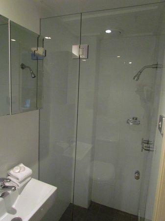 Springfield Lodge: shower