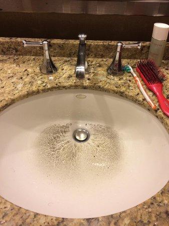 Hilton Anatole: Bad drainage at the hotel room.