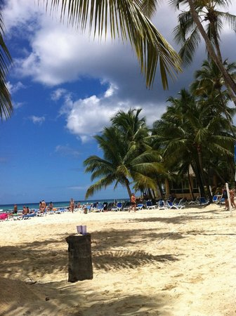 Viva Wyndham Dominicus Beach: Beautiful place!