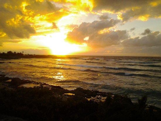 Ocean Spray Beach Apartments : Sonnenaufgang