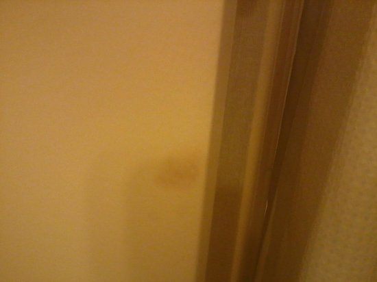 Palace Station Hotel and Casino: Second Blood Stain on Bathroom Door