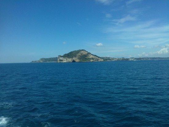 Oasi la Vigna B&B Restaurant: vista del mare di fronte