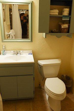 Silver Saddle Motel: Il bagno