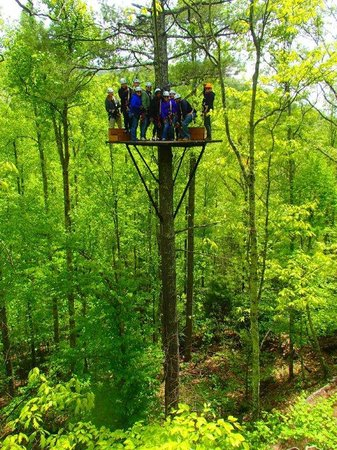 Sky Valley Zip Tours: great fun