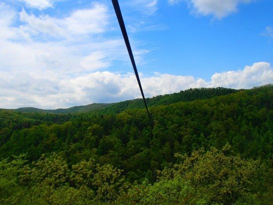 Sky Valley Zip Tours: across big momma