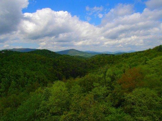 Sky Valley Zip Tours: beautiful scenery