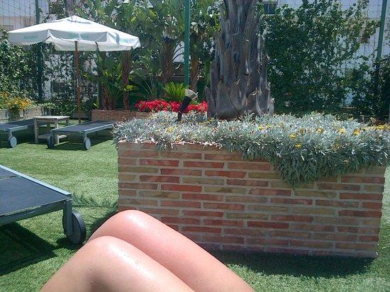 TRYP Valencia Feria: Poolside