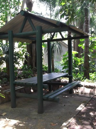 Ashmore Palms Holiday Village : Seat in the rainforest walk around the perimeter of Ashmore
