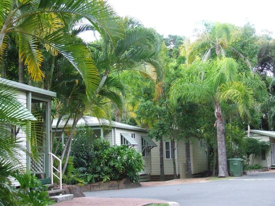 Ashmore Palms Holiday Village: View of the park