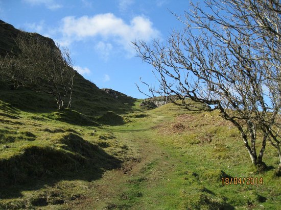 Fairy Glen : Heading up