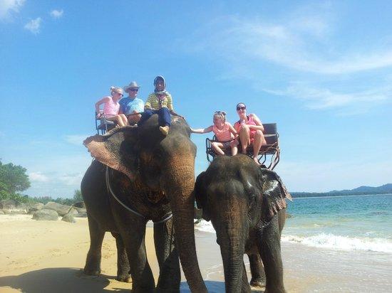 Ramada Khao Lak Resort: Elephant trek and bathing, organised thru Ramada.