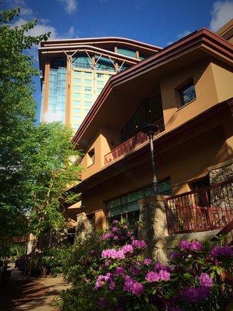Harrah's Cherokee Casino Resort: Harrah's Cherokee Hotel