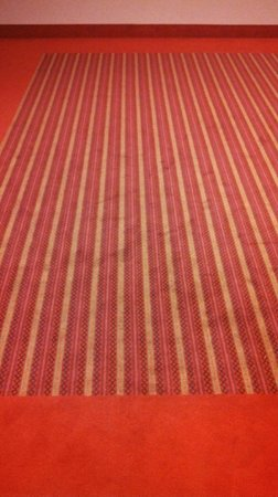 Park Inn by Radisson Meriton Conference & Spa Hotel Tallinn: Each floor has a carpet in a traditional Estonian pattern