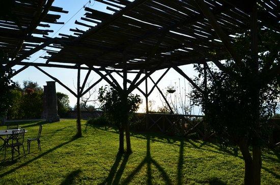 Masseria Astapiana Villa Giusso: Terrasse et détente