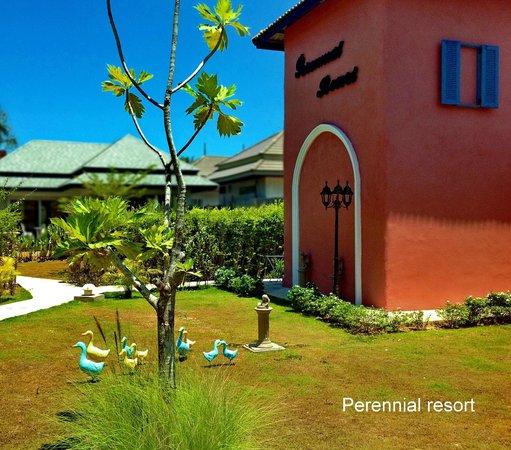 Perennial Resort : Garden