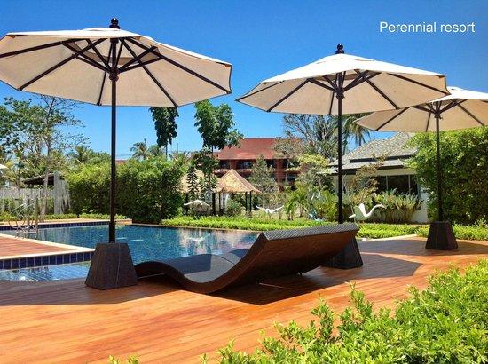 Perennial Resort : Pool