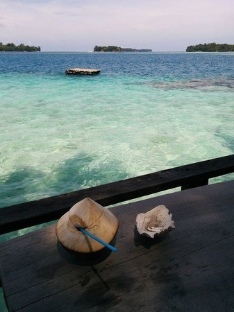 Pulau Macan Tiger Islands Village & Eco Resort : View from the breakfast / bar area