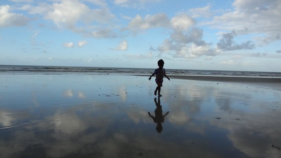 Cape Tribulation Beach House: Cape trib 1