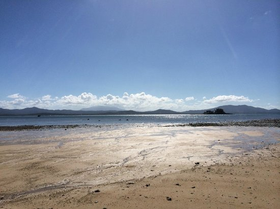 Dunk Island Holidays: Featured Pictures Of Wongaling