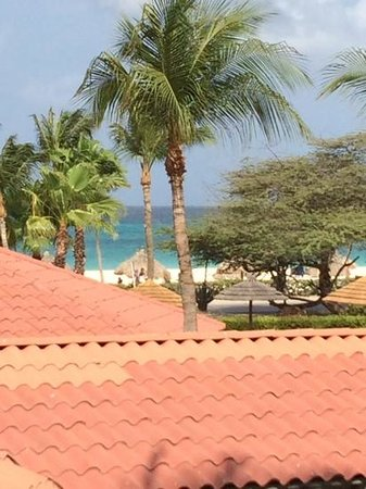 Divi Village Golf and Beach Resort: view from the room