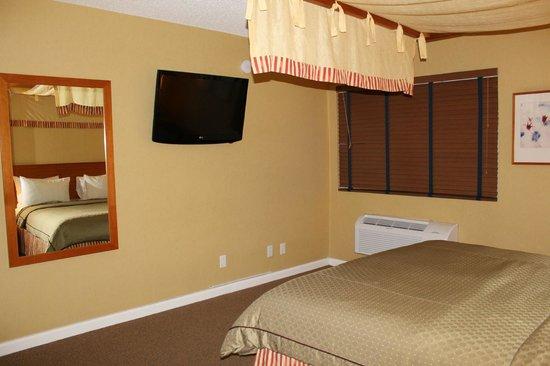 Wild Palms Hotel - a Joie de Vivre Hotel : TV