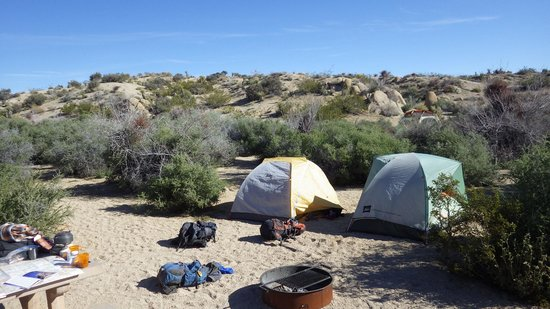 Jumbo Rocks Campground: Our camp (some site in the nineties)