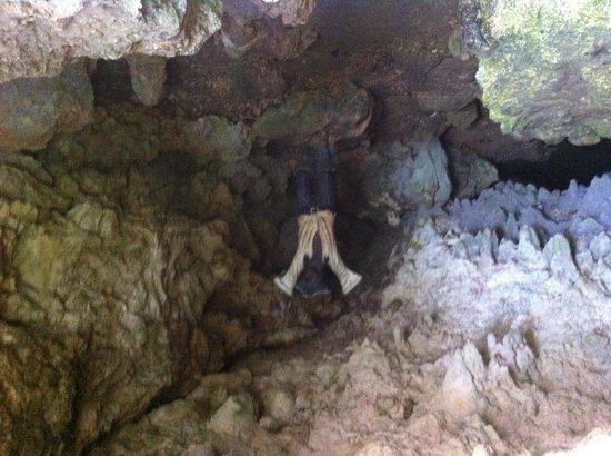Morgan's Cave : Morgan cove