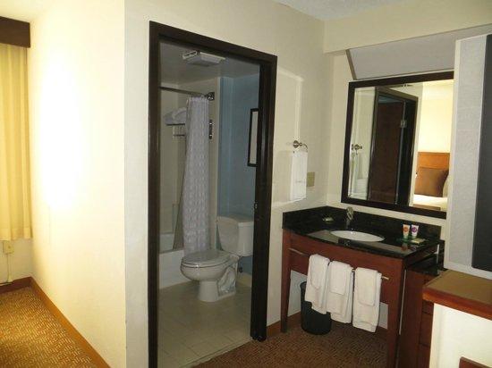 Hyatt Place Atlanta/Alpharetta/North Point Mall: Bathroom