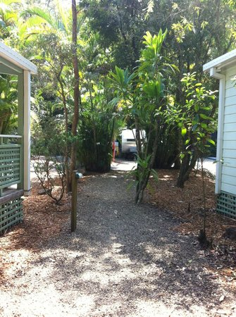 Rainforest Holiday Village: Park grounds