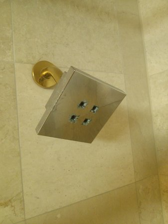 Monte Carlo Resort & Casino : Shower head was repulsive