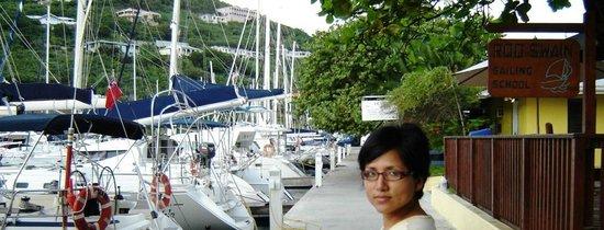 Nanny Cay Marina & Hotel: Main Dock