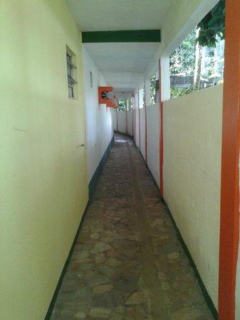 Pousada Bionica: corredor de entrada