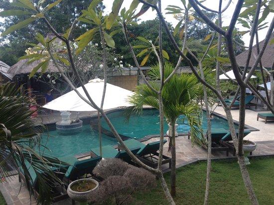 Nanuks Lembongan Bungalows : pool area