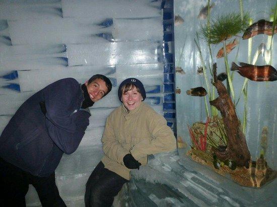Ice Space: Айс Спэйс