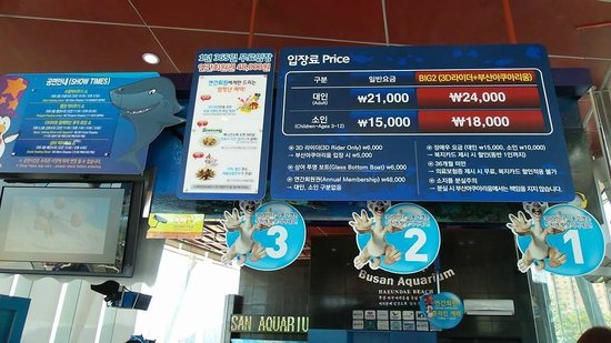 Dongbaekseom Island: Aquarium entrance fees