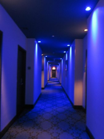 The Saint Hotel, Autograph Collection: Hallway