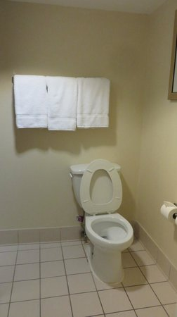 Fairfield Inn & Suites Savannah Airport: Bathroom