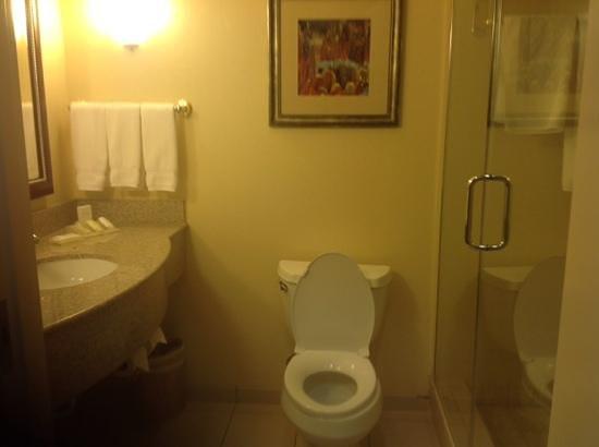Hilton Garden Inn Las Vegas Strip South: 109 bath
